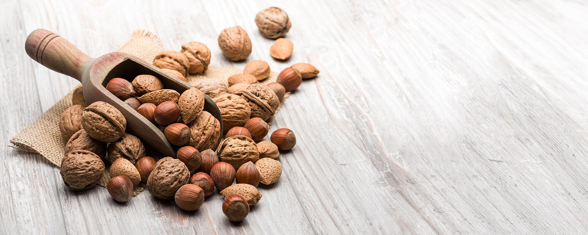 Nüsse aus den besten Anbaugebieten der Welt | Frutree